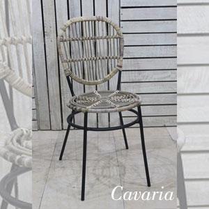 Cavaria-300x300